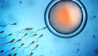 Sperm sayısını arttıkmak için bunları yapmalısınız