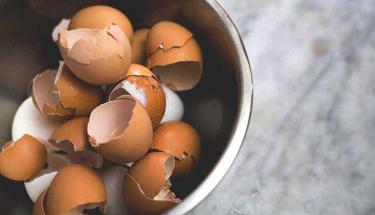 Yumurta kabuklarını sakın çöpe atmayın!