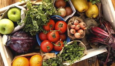 Bu besinler beyin gelişiminde mucize yaratıyor!
