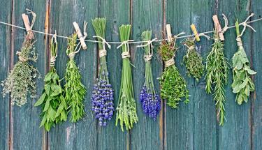 Çiçek kurutmak için en etkili yöntemler!