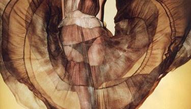 Transparan kıyafetleri nasıl giyebilirsiniz?