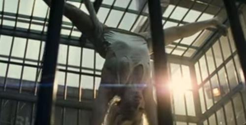 Suicide Squad filmi fragmanı!