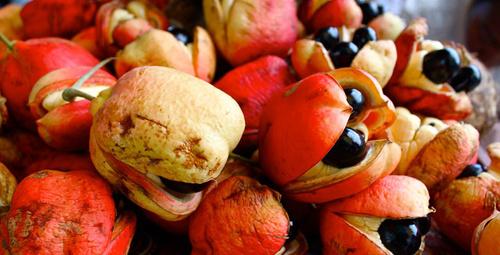 Bu meyveleri daha önce hiç yediniz mi?