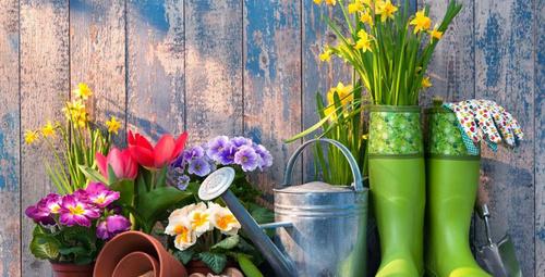 Mevsimlere göre bahçenizi dekore edin