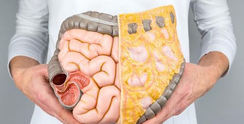 Berna Laçin'in diyeti ile fazlalıklarınızdan kurtulun!