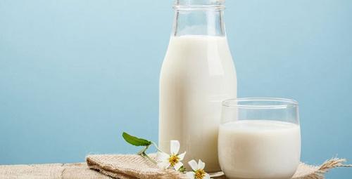 Sahurda her gün bir bardak süt içerseniz...