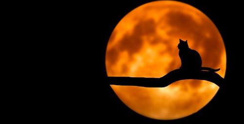 Kanlı ay tutulması kehanetleri korkutucu!