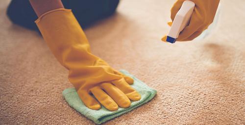 Halınızdaki lekeleri bu yöntemle temizleyebilirsiniz!