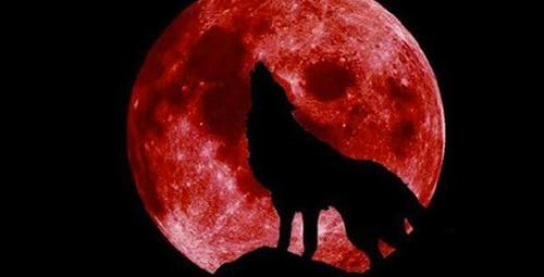 Süper Kanlı Kurt Ay tutulmasına hazır olun!