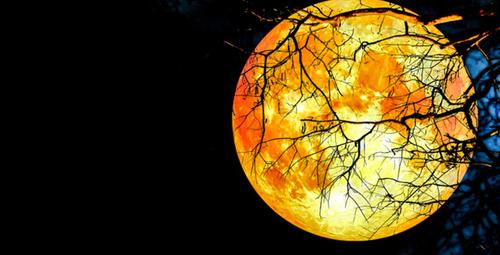 Süper Kanlı Kurt Ay Tutulması kehanetleri 2019