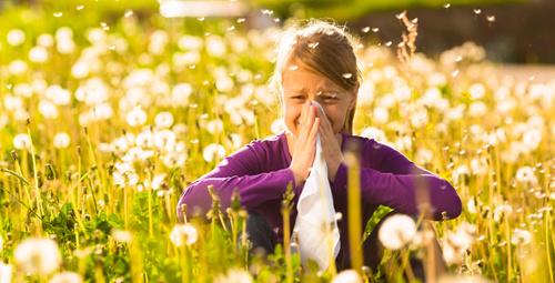 Çocuğunuzu polen alerjisinden uzak tutmak için dikkat!
