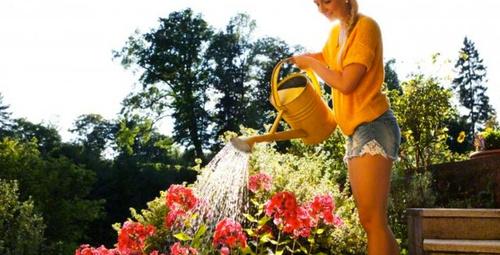 Yazın bahçede toprak bakımı nasıl olmalıdır?