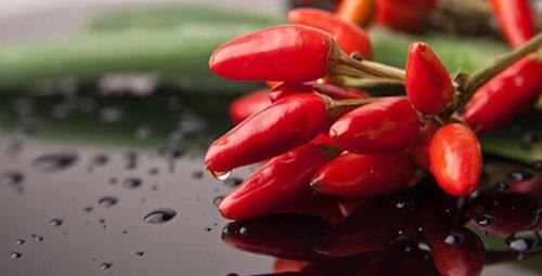Metabolizma hızını artıran 4 harika besin!
