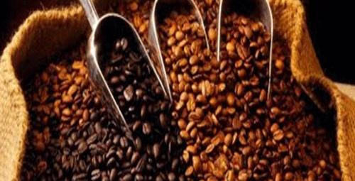 Gençlik formülü menengiç kahvesinde