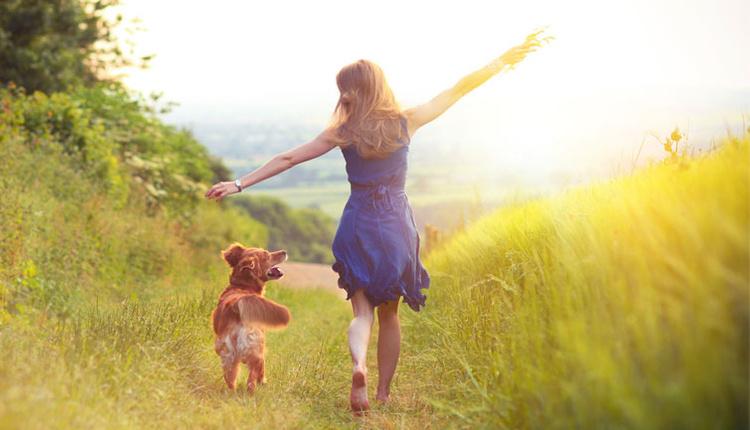 Mutlu olmak için ne yapmak lazım büyük nedenlere gerek yok 4 basit kural hayat kurtarıyor!