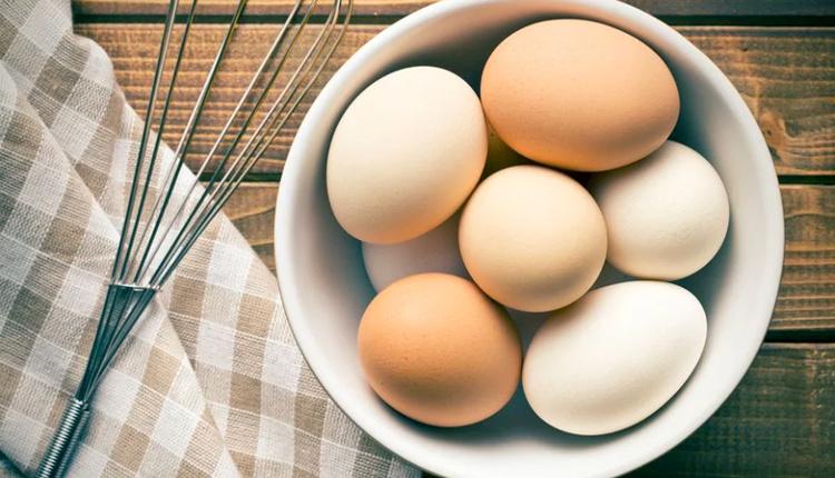 Beyaz ve kahverengi yumurtalar arasındaki fark nedir hangi yumurta besleyici?