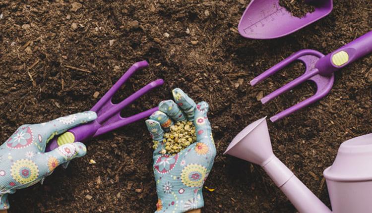 Bahçelerde sonbahar bakımı nasıl olmalı neler yapmalı?