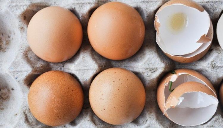 Yumurta kabuğunun faydaları nelerdir kemik erimesi tedavisinde bir numara!