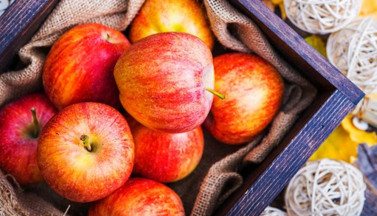 Yenmeyen elmaları değerlendirme sakın atmayın!