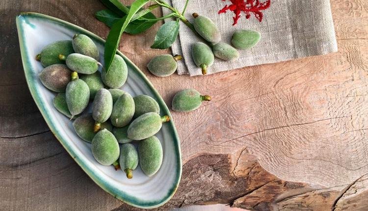Çağla meyvesinin faydaları hastalıklara karşı kalkan oluşturuyor!