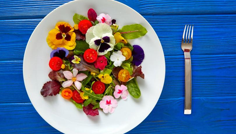 Farklı bir lezzet Latin çiçeği niçoise salatası tarifi