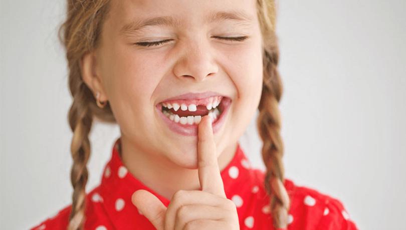 Süt dişleri ne işe yarıyor?