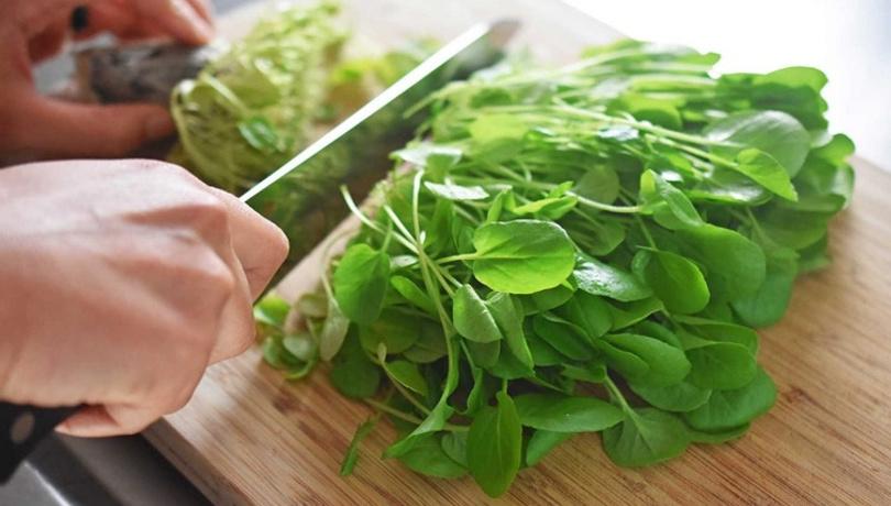 Sürekli yemeniz gereken 6 müthiş yeşillik!